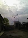 Marumo_open