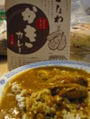 Oystercurry