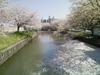Shinkawafune